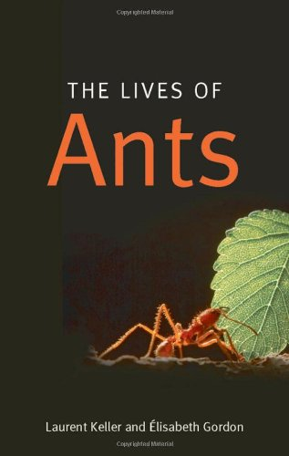 Image for The Lives of Ants