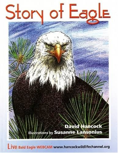 Image for Story of Eagle Activity & Coloring Book