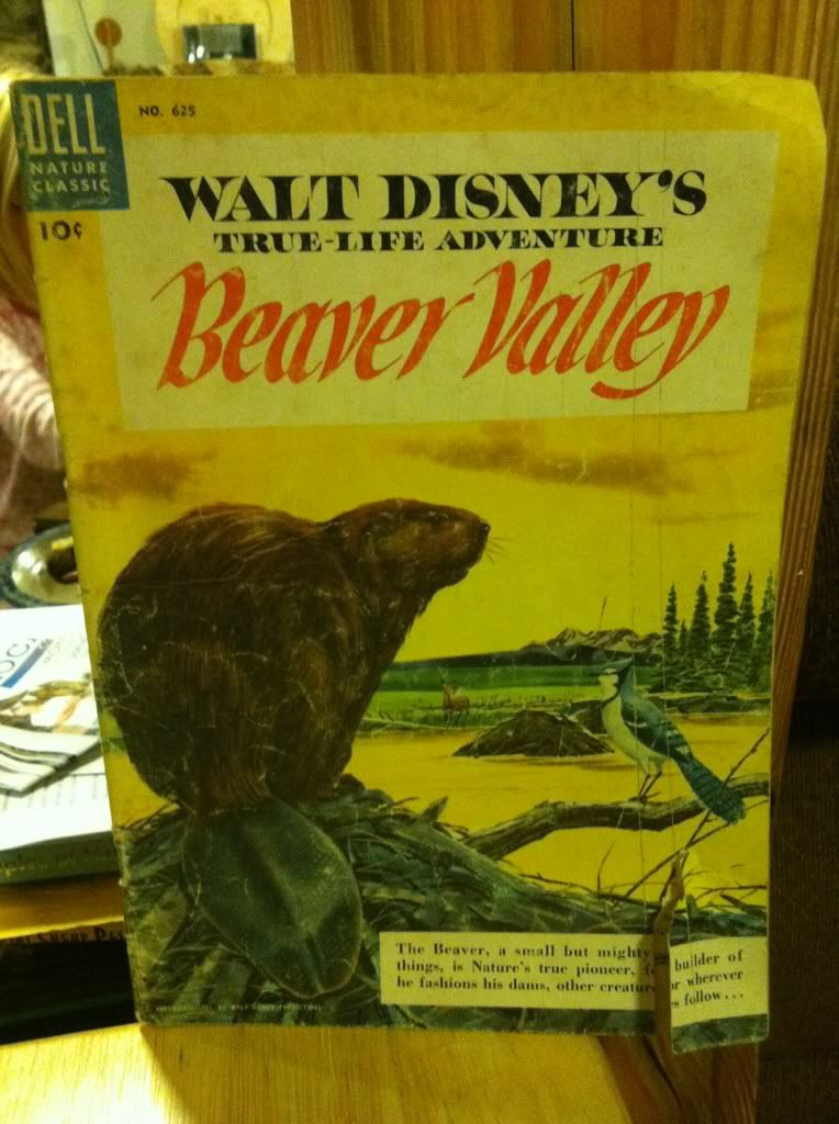 Image for Walt Disney's Beaver Valley (Ture;life adventure series)