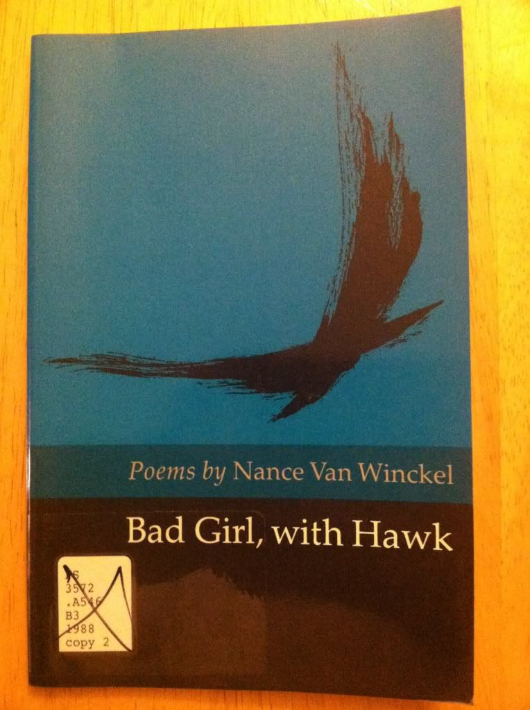 Image for BAD GIRL WITH HAWK: Poems