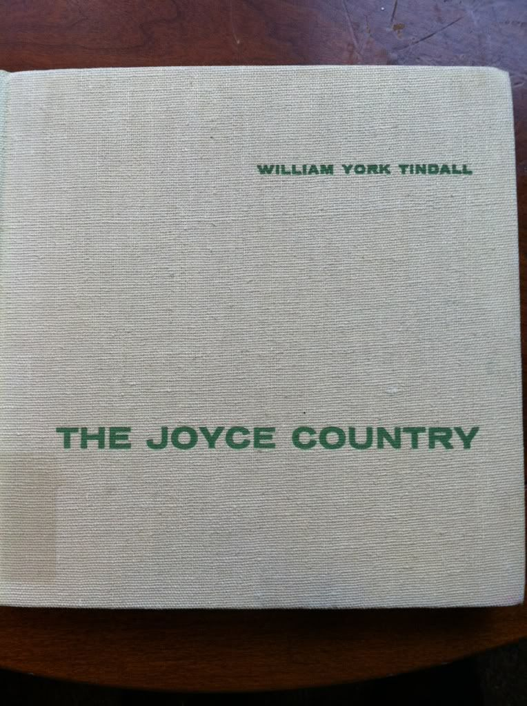 Image for The Joyce Country by Tidall, William York