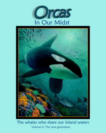 Image for Orcas in our midst: The whales that share our inland waters,  Volume 2: The Next Generation