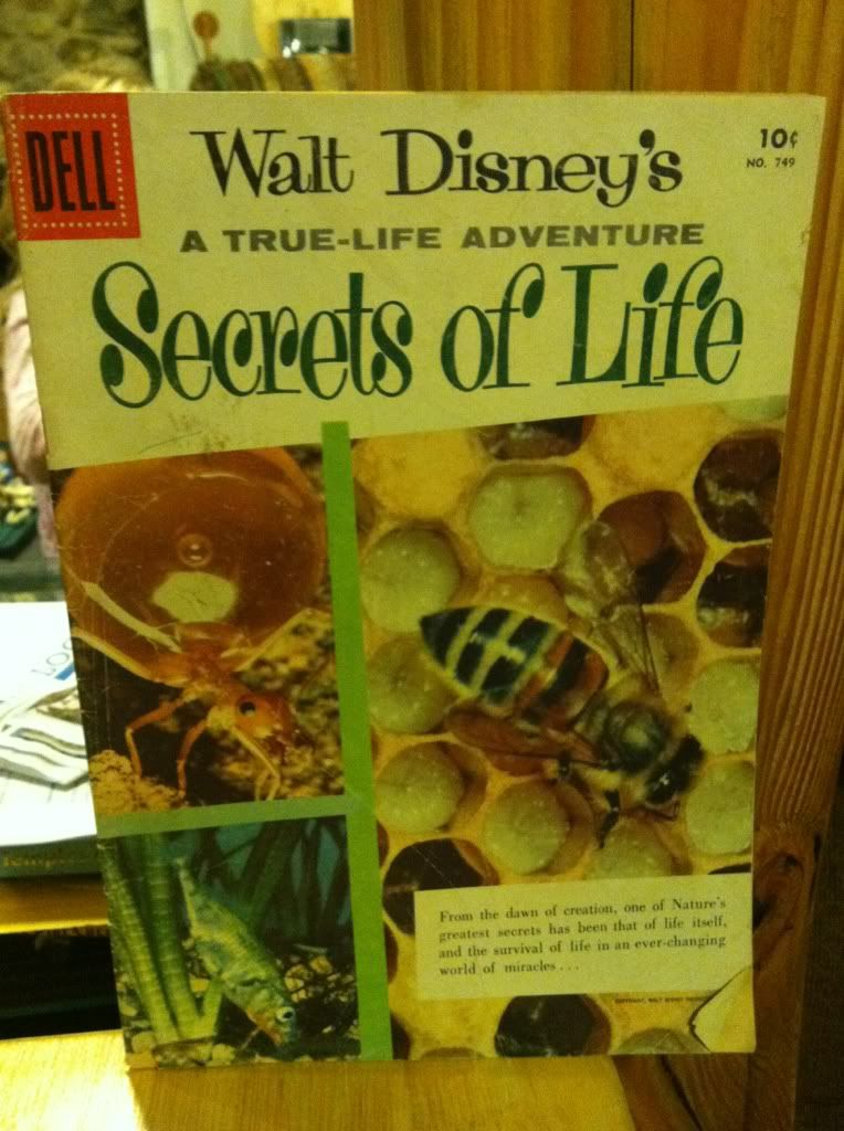Image for Walt Disney's Secrets of Life: A True-Life Adventure Comic No. 749 by n/a