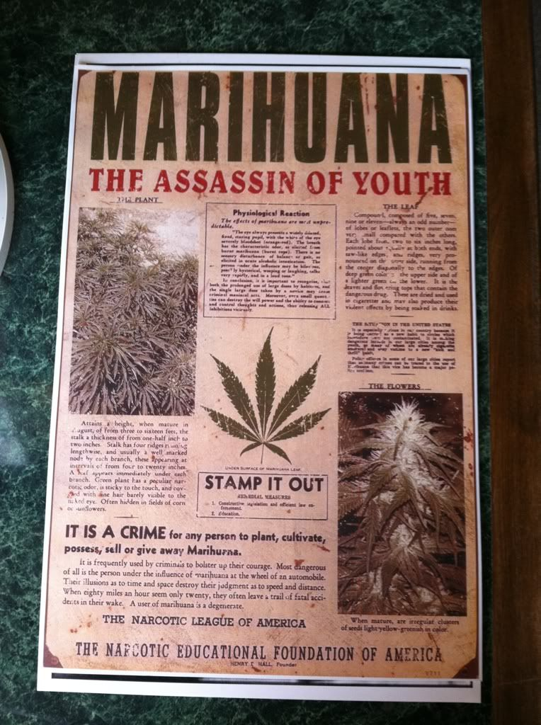 Image for Marihuana Assassin of Youth Anti Drug Poster