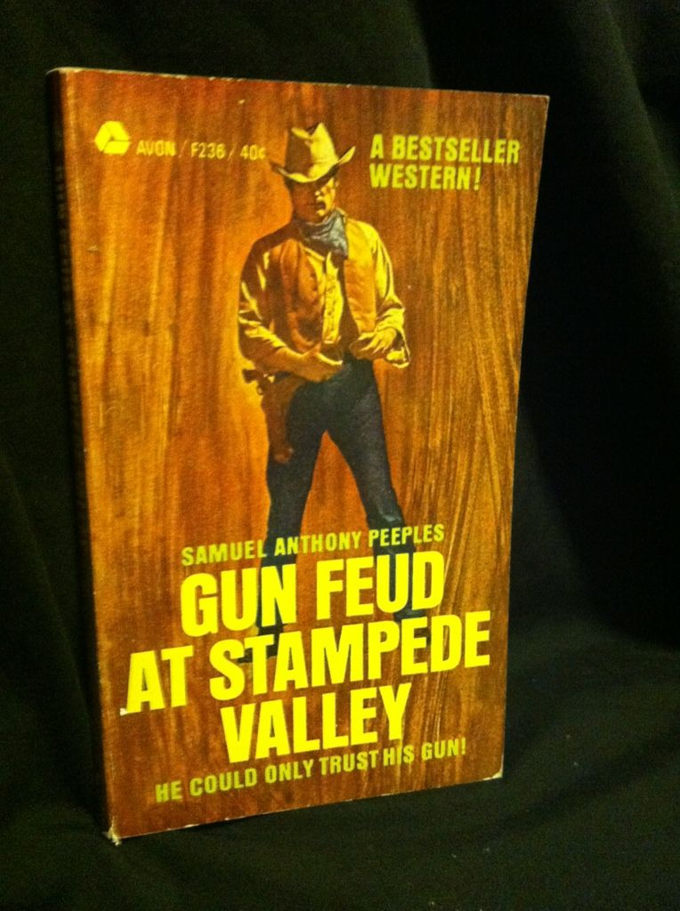 Image for Gun Feud at Stampede Valley