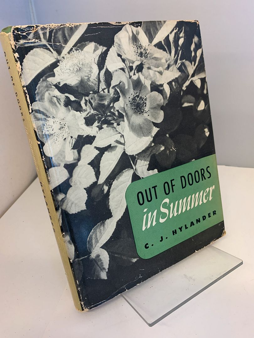 Image for Out of doors in summer,