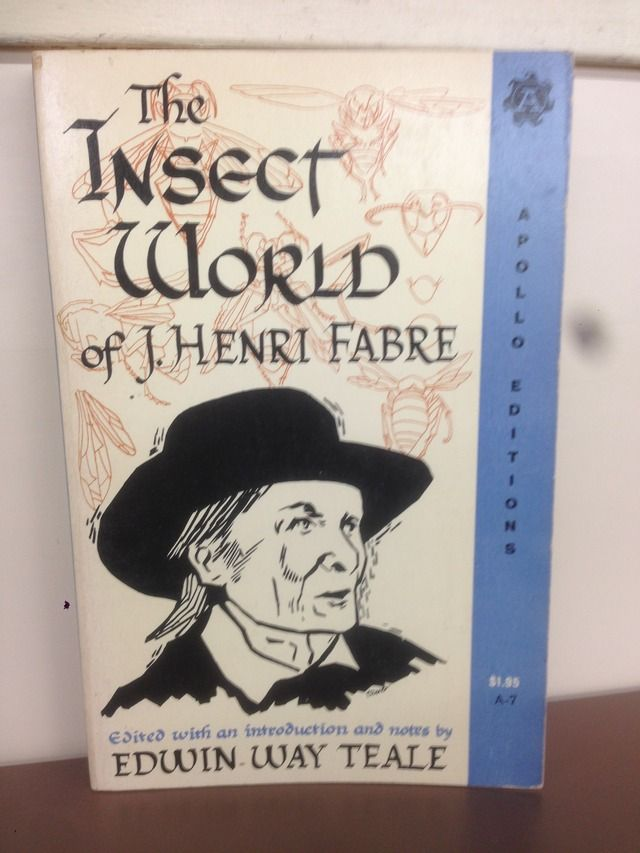 Image for The Insect World of J. Henri Fabre
