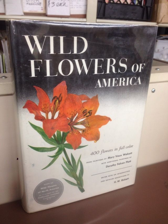Image for Wild Flowers of America: 400 Flowers in Full Color