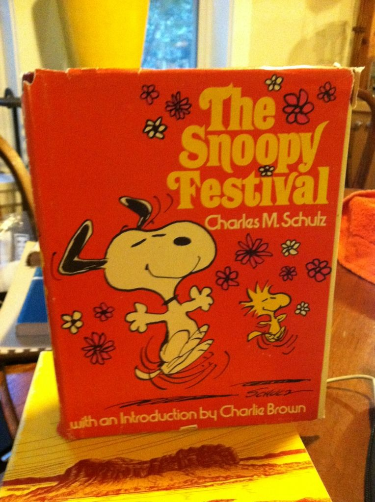 Image for The Snoopy Festival (Chinese Printing)
