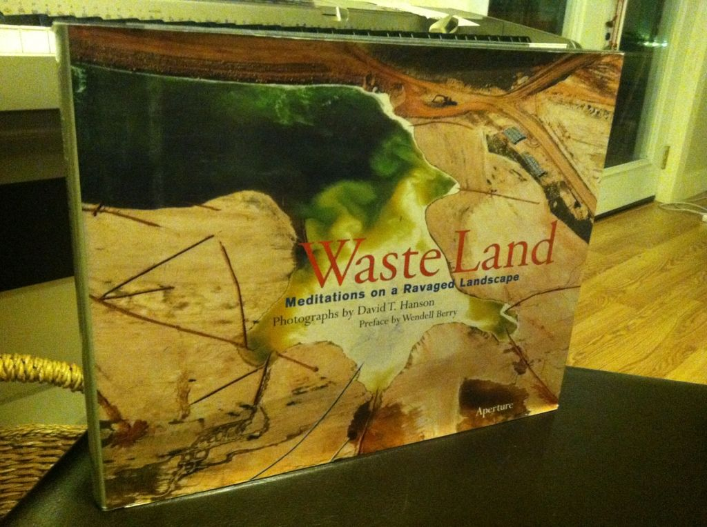 Image for Waste Land: Meditations on a Ravaged Landscape