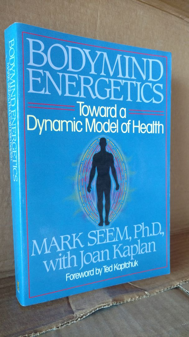 Image for Bodymind Energetics: Toward a Dynamic Model of Health