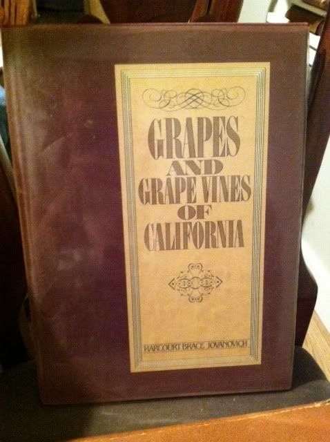 Image for Grapes and grape vines of California